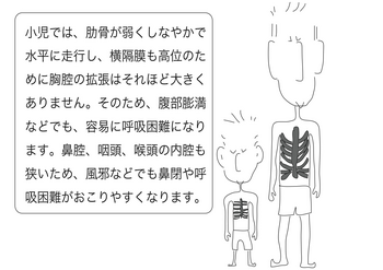 子供の肋骨.png