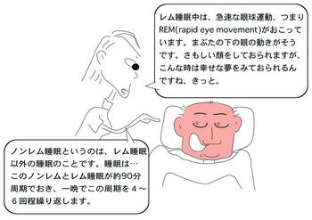 レム睡眠.png