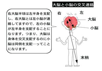 交叉連絡.png
