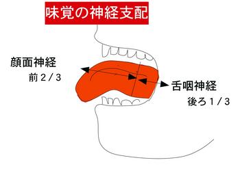 味覚支配.png