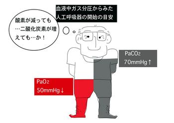 酸素分圧.png